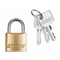 Cylinder lock individual keys