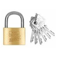 Precision cylinder lock individual keys