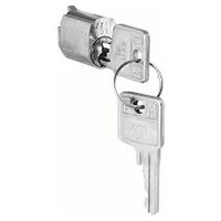 Lock barrel with 2 keys